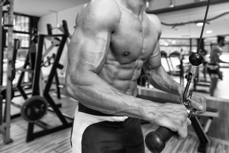 Extension des triceps à la poulie