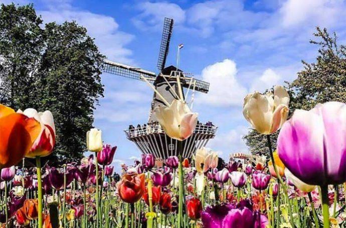 découverte de Amsterdam