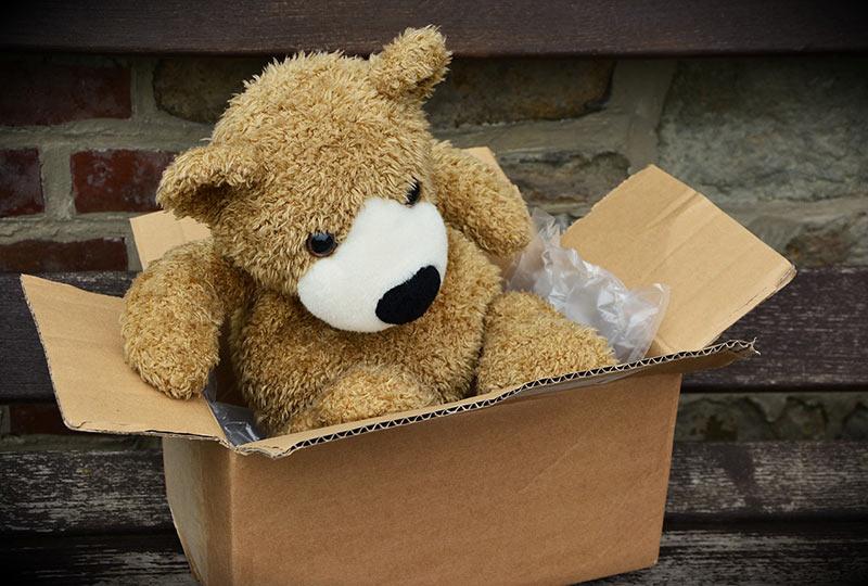 ours dans un carton