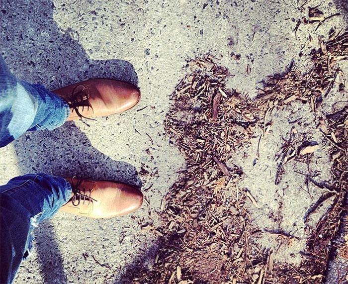 chaussures derbis pour hommes